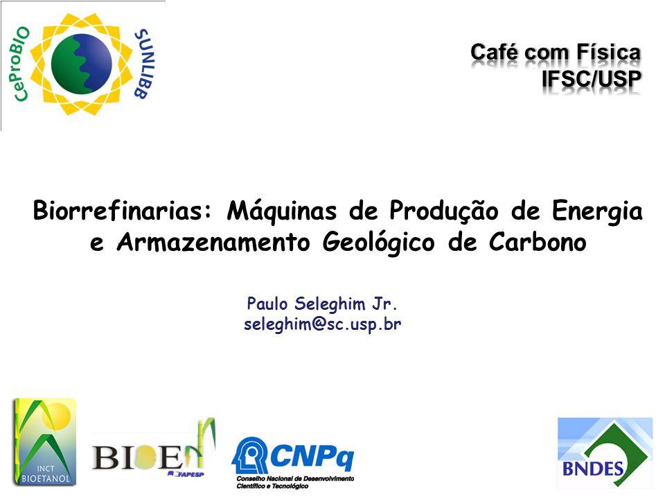 Biorrefinarias: Máquinas de Produção de Energia e Armazenamento Geológico de Carbono Paulo Seleghim Jr. seleghim@sc.usp.br