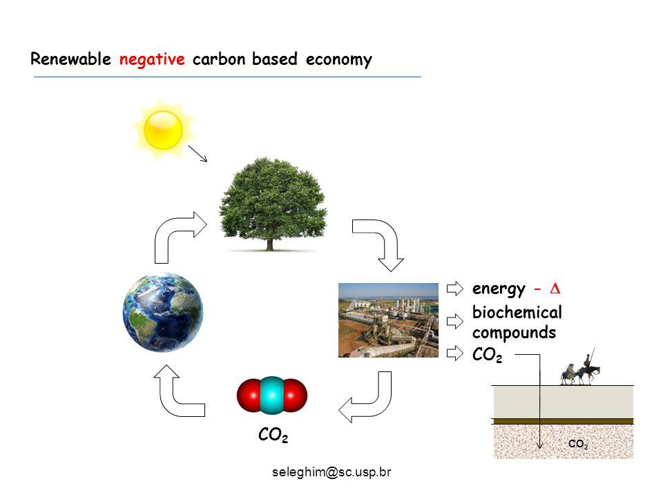 Typical sugarcane mill Renewable negative carbon based economy energy -  biochemical compounds CO 2 seleghim@sc.usp.br CO 2