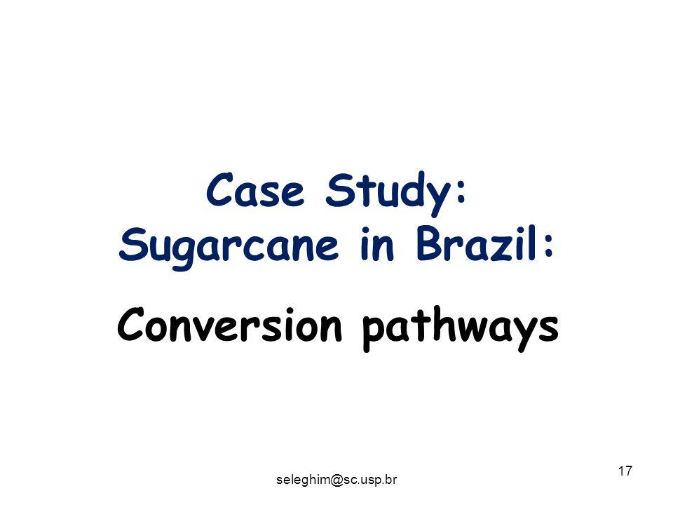 17 Case Study: Sugarcane in Brazil: Conversion pathways seleghim@sc.usp.br