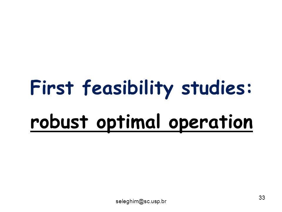 33 First feasibility studies: robust optimal operation seleghim@sc.usp.br