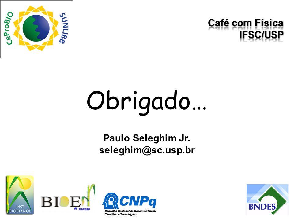Obrigado… Paulo Seleghim Jr. seleghim@sc.usp.br