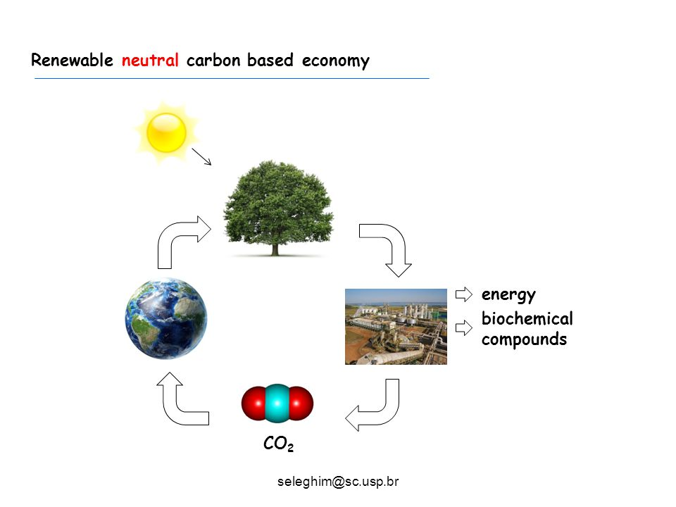 Typical sugarcane mill Fossil carbon based economy
