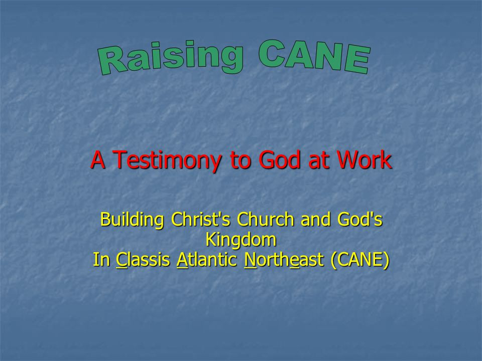 A Testimony to God at Work Building Christ s Church and God s Kingdom In Classis Atlantic Northeast (CANE)
