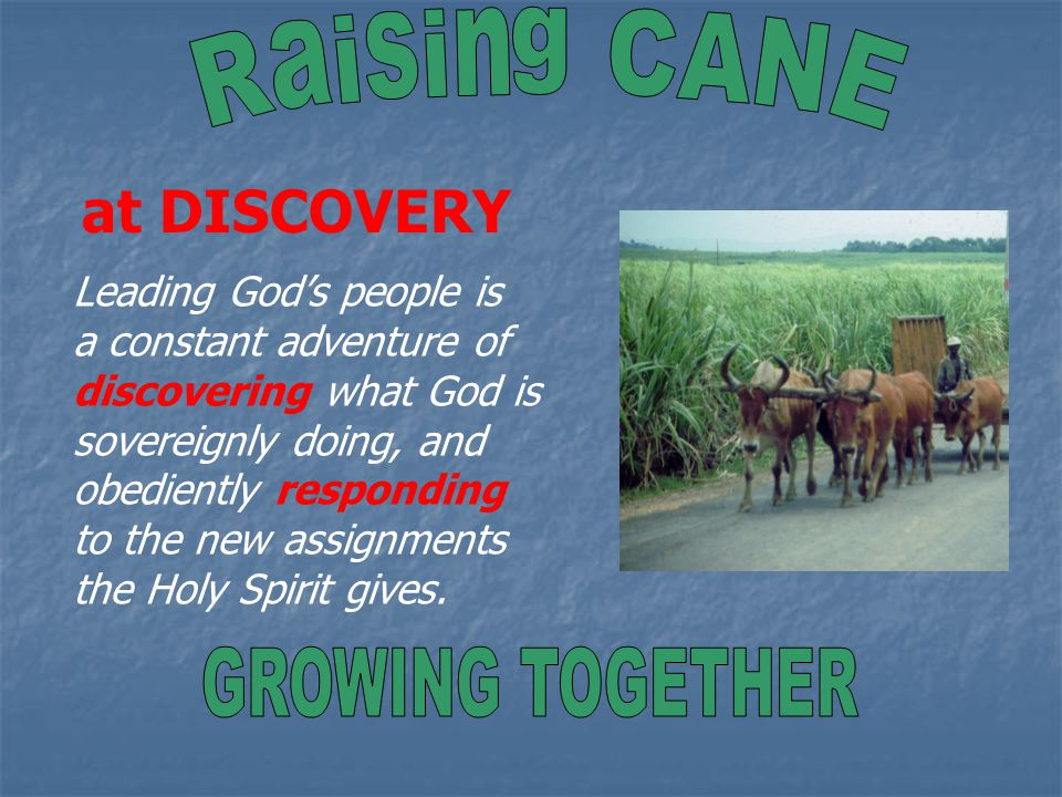 at DISCOVERY Leading God's people is a constant adventure of discovering what God is sovereignly doing, and obediently responding to the new assignments the Holy Spirit gives.