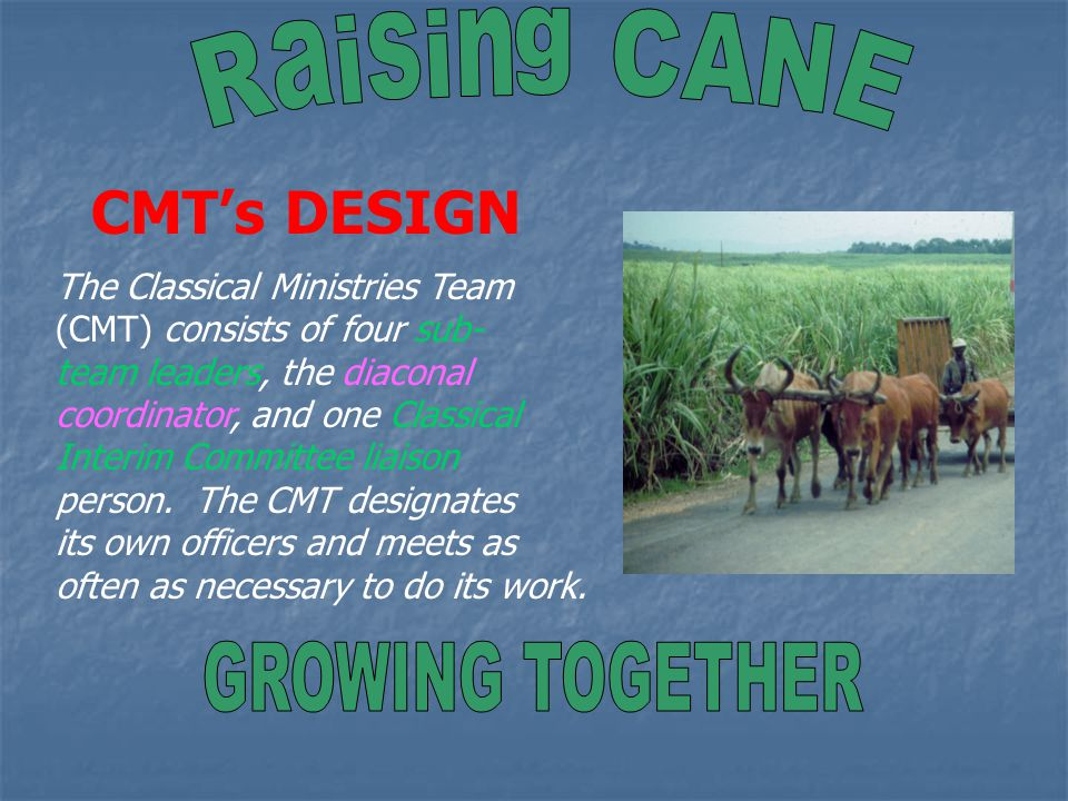 CMT's PURPOSE God's Spirit enables CANE's Classical Ministry Team (CMT) to discerningly follow God's intent and work in the ministries of Classis Atlantic Northeast.