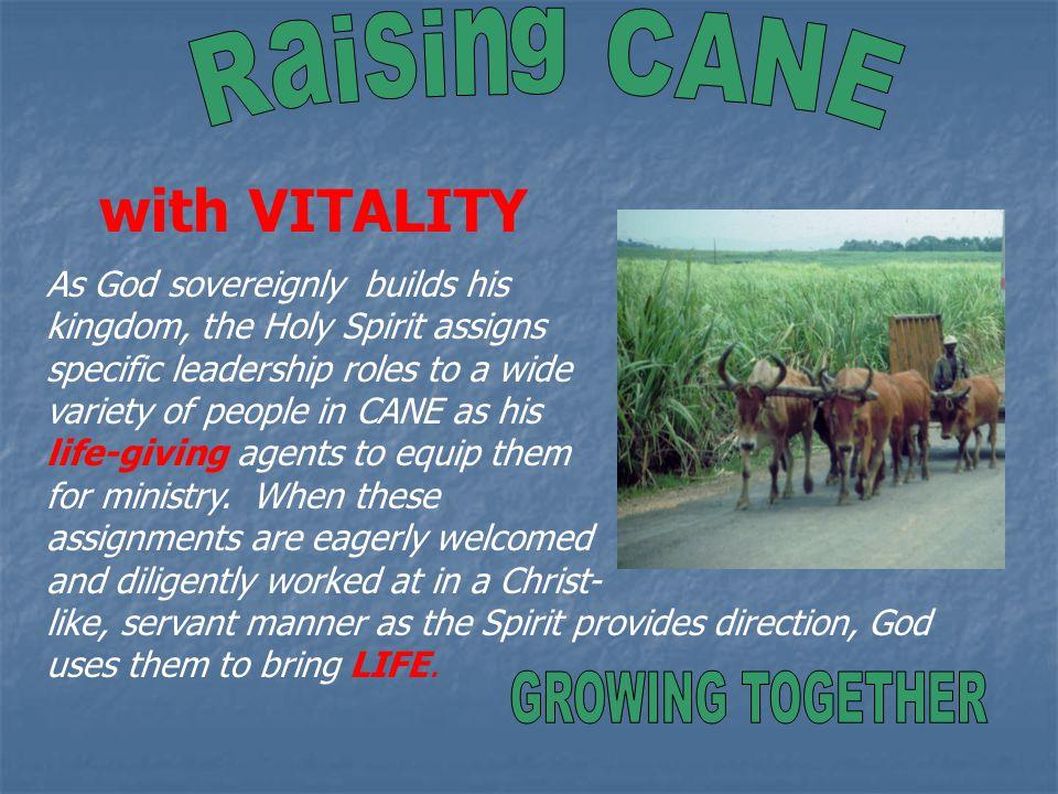 Mission Focused Churches Church Planting & Development