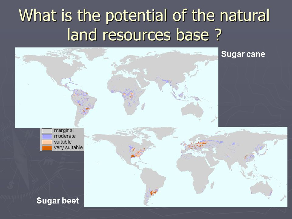 What is the potential of the natural land resources base Sugar cane Sugar beet