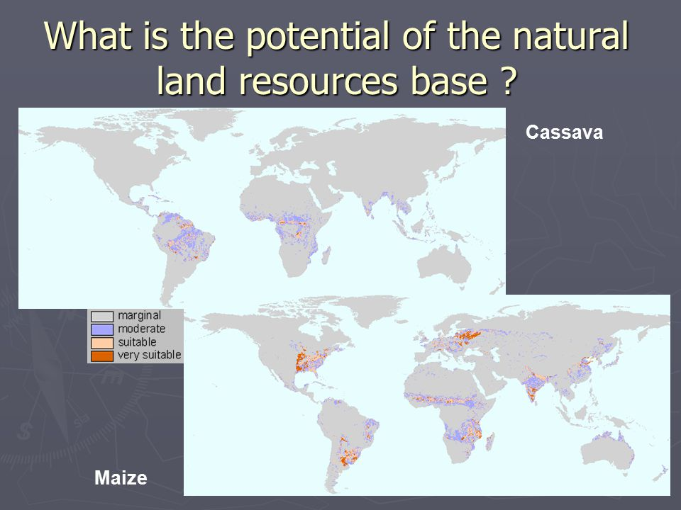 What is the potential of the natural land resources base Cassava Maize