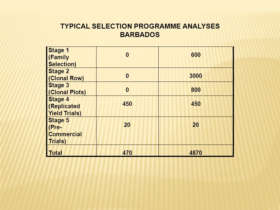 Stage 1 (Family Selection) 0600 Stage 2 (Clonal Row) 03000 Stage 3 (Clonal Plots) 0800 Stage 4 (Replicated Yield Trials) 450 Stage 5 (Pre- Commercial Trials) 20 Total4704870 TYPICAL SELECTION PROGRAMME ANALYSES BARBADOS
