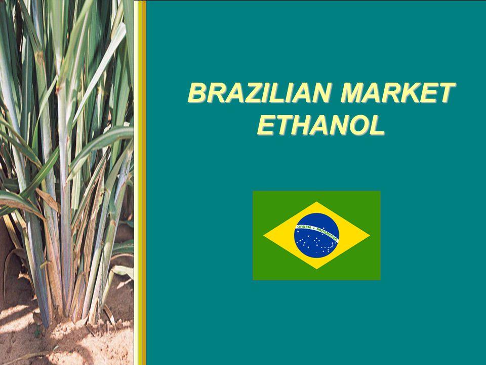 Brazilian Ethanol Exportation Projection 0.0 0.5 1.0 1.5 2.0 2.5 3.0 3.5 4.0 4.5 2004/052005/062006/072007/082008/092009/10 Billion of liters