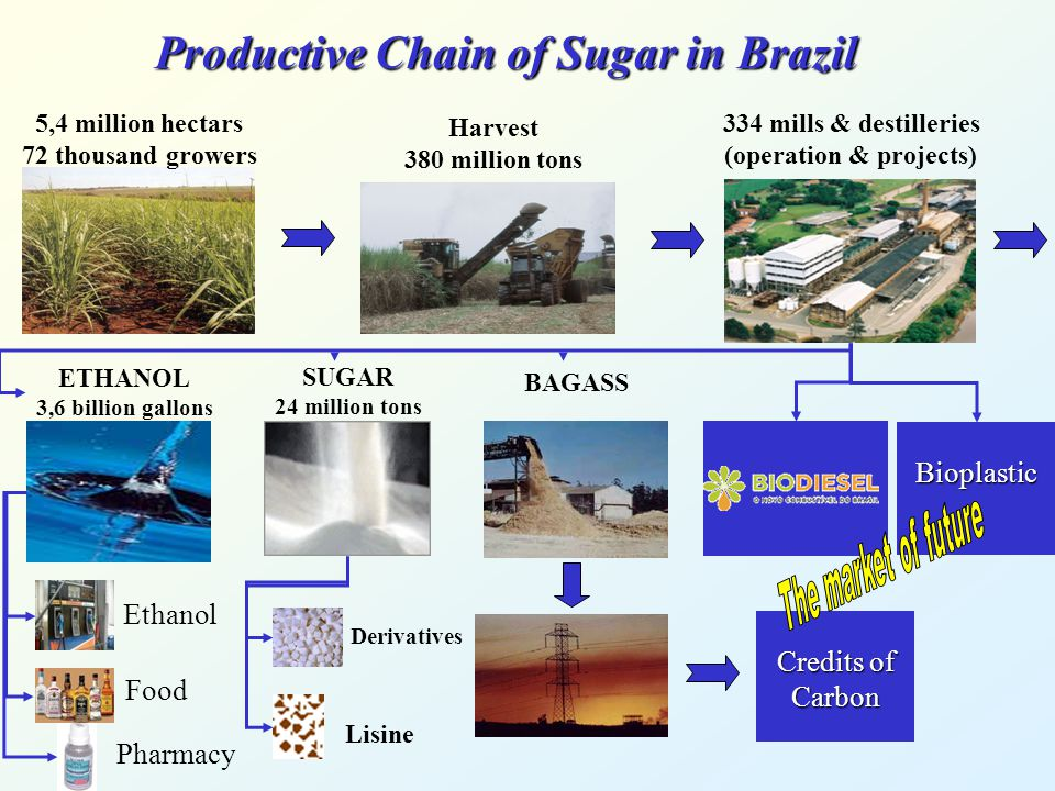 Productive Chain of Sugar in Brazil Credits of Carbon 5,4 million hectars 72 thousand growers 334 mills & destilleries (operation & projects) Harvest 380 million tons ETHANOL 3,6 billion gallons SUGAR 24 million tons BAGASS Bioplastic Ethanol Food Pharmacy Lisine Derivatives
