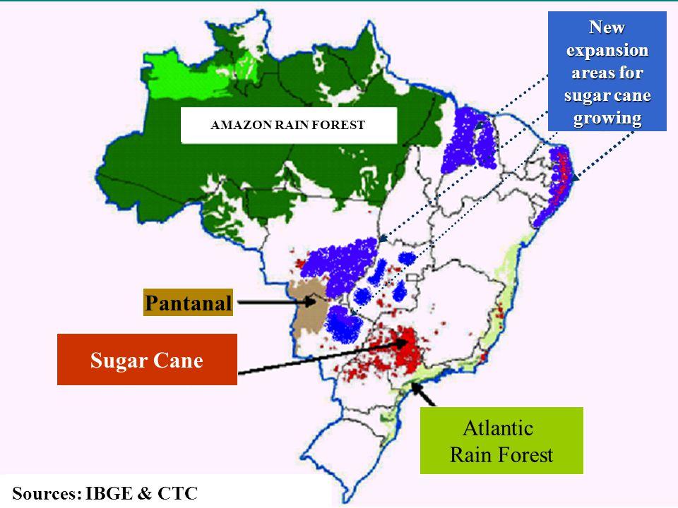 Ethanol Brazilian Production