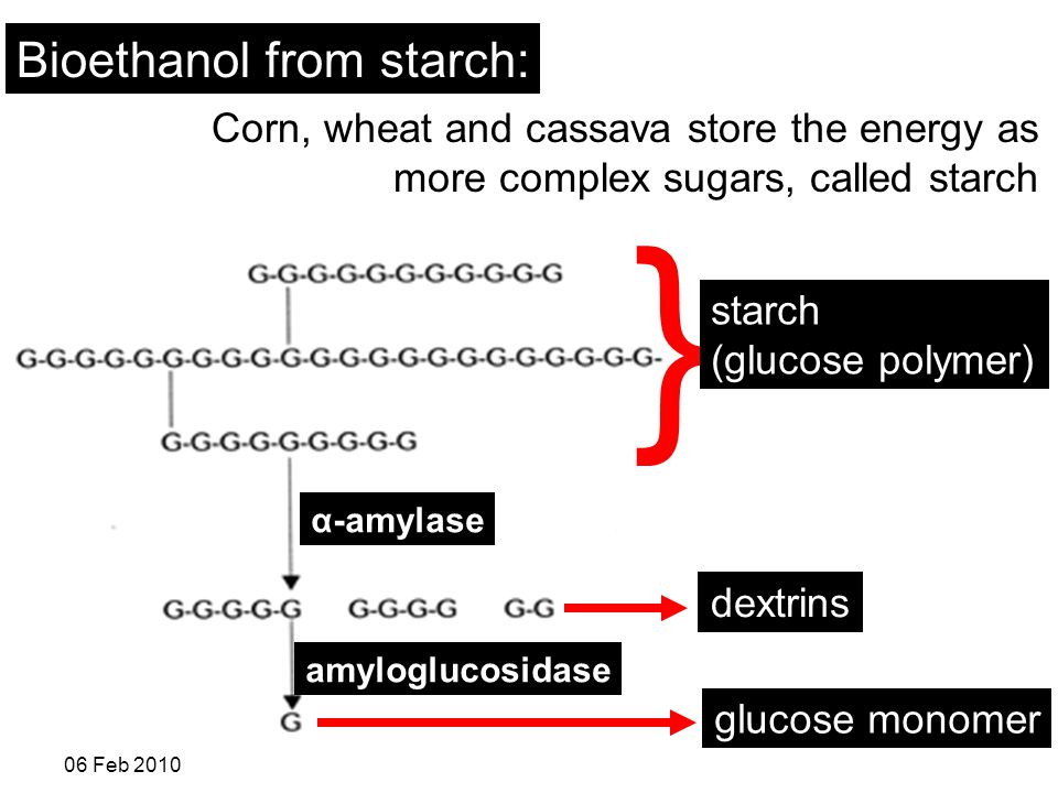 R. Shanthini 06 Feb 2010 Bioethanol from starch: Corn, wheat and cassava store the energy as more complex sugars, called starch dextrins α-amylase amy