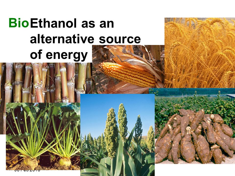 R. Shanthini 06 Feb 2010 Bioethanol is produced from plants that harness the power of the sun to convert water and CO 2 to sugars (photosynthesis), th