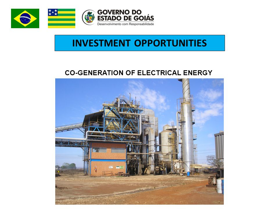 INVESTMENT OPPORTUNITIES CO-GENERATION OF ELECTRICAL ENERGY