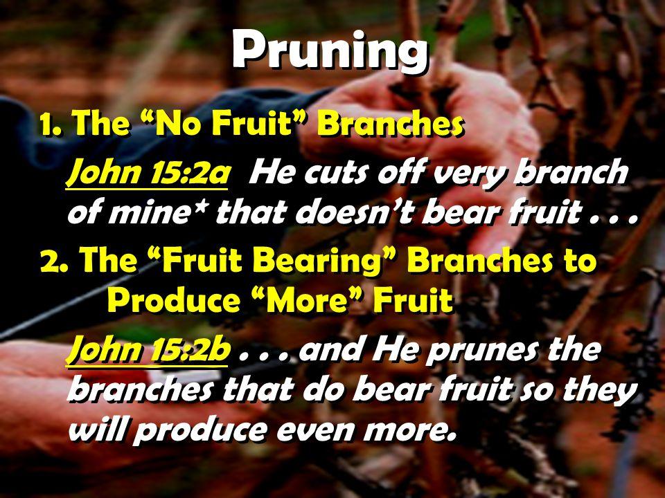 Pruning 1.