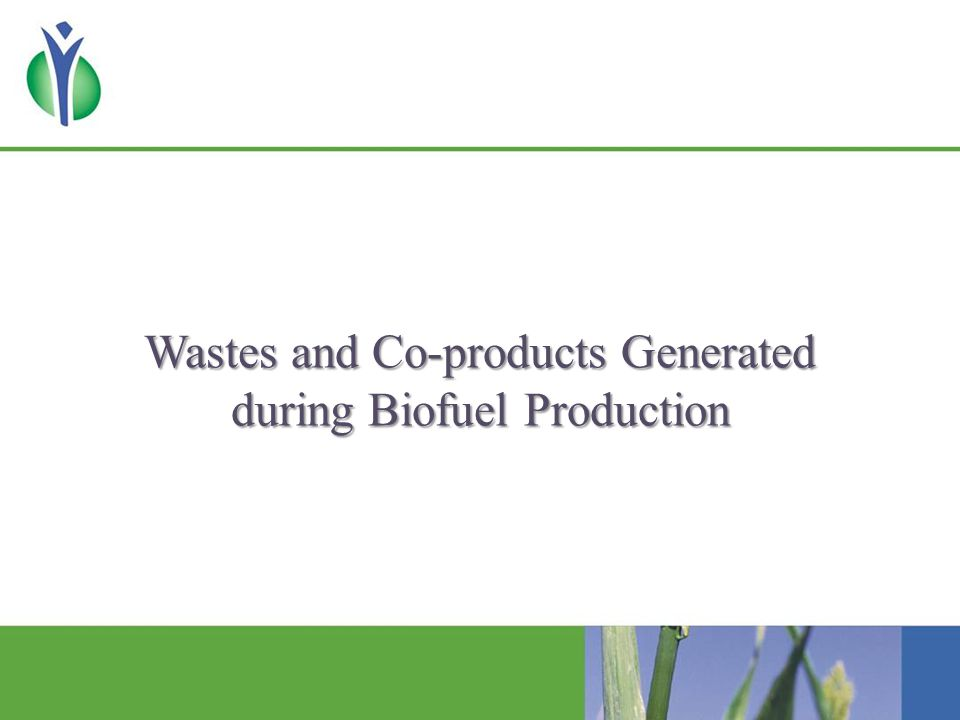 Wastes and Co-products Generated during Biofuel Production