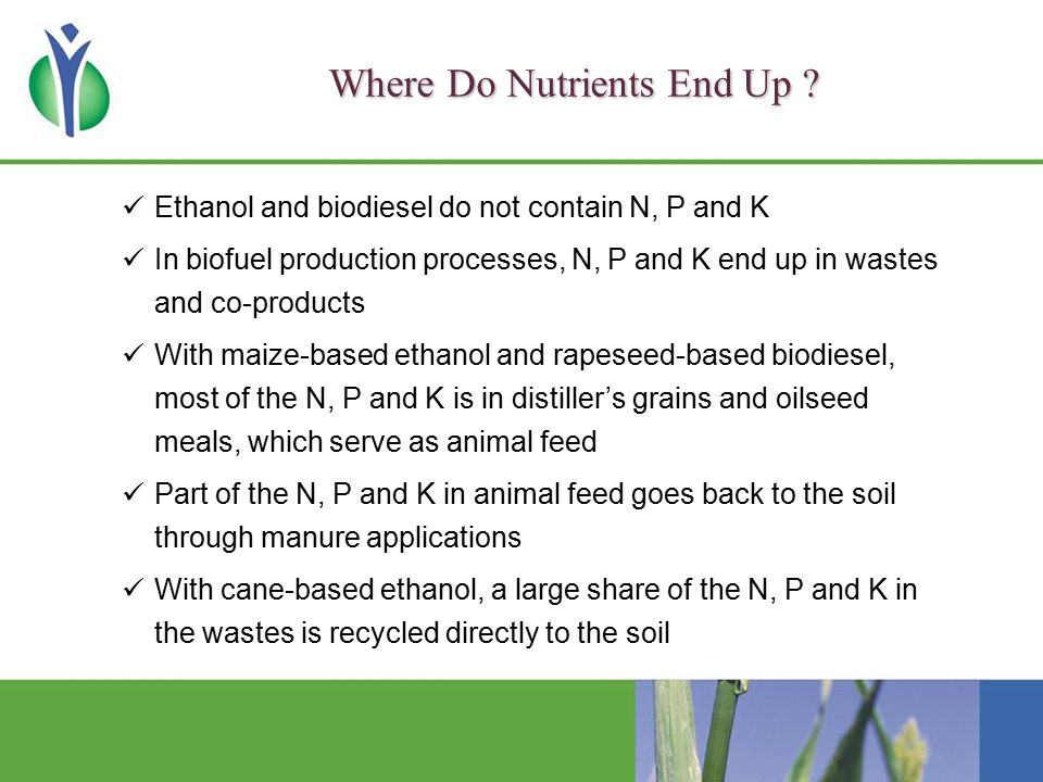 Where Do Nutrients End Up .