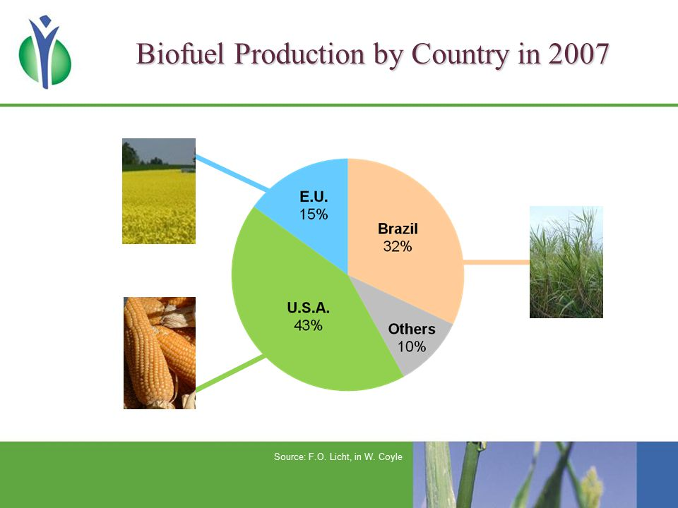 Biofuel Production by Country in 2007 Source: F.O. Licht, in W. Coyle
