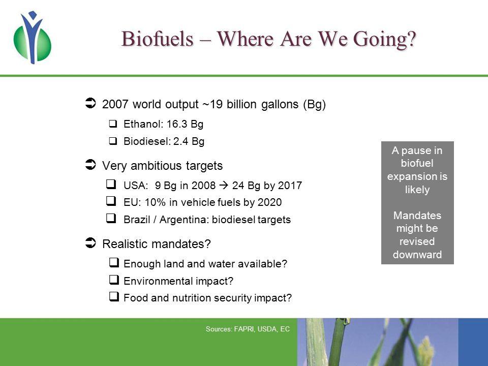 US Biofuel Outlook 2007 US Renewable Fuel Standard (bill gallons) US Maize Uses (bill bu) Source: USDA RFS ethanol derived from com starch Total RFS