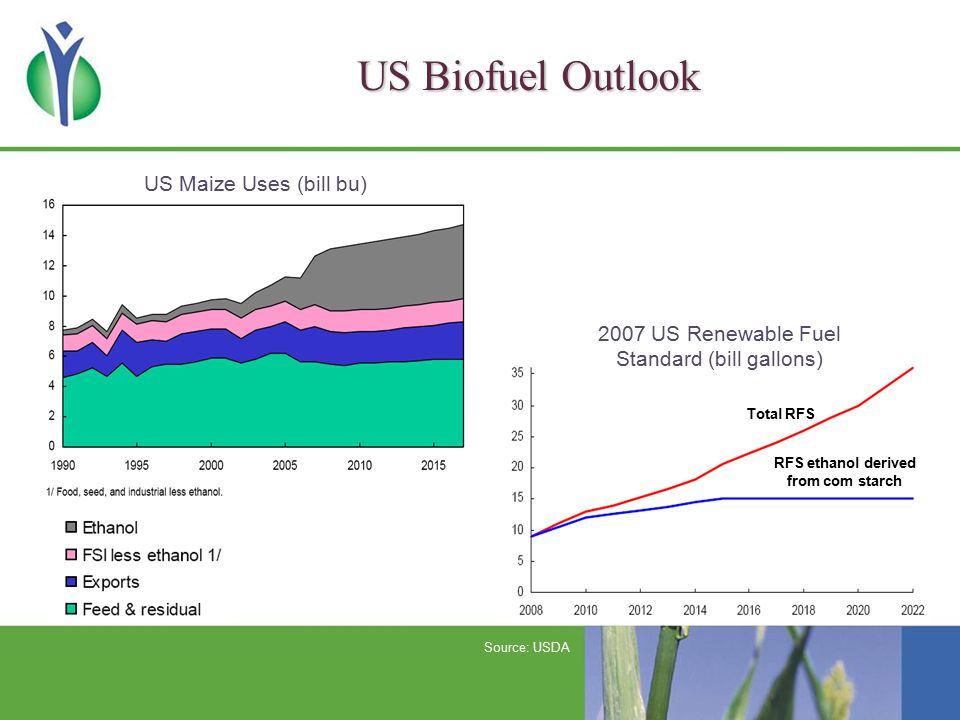 Global Biofuel Outlook These projections do not take new US and EU mandates into account World Ethanol Output (Bg) World Biodiesel Output (Bg) Source: FAPRI