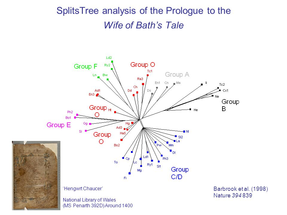 SplitsTree analysis of the Prologue to the Wife of Bath's Tale Barbrook et al.