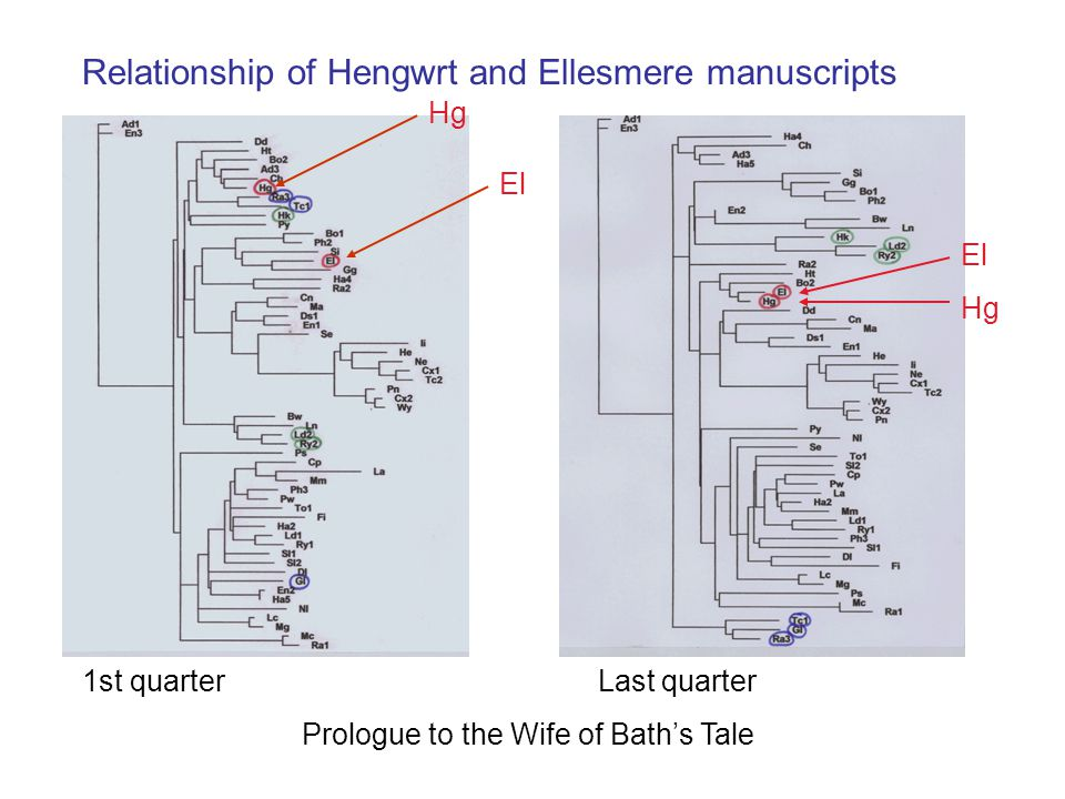 1st quarter Last quarter Prologue to the Wife of Bath's Tale Hg El Hg Relationship of Hengwrt and Ellesmere manuscripts