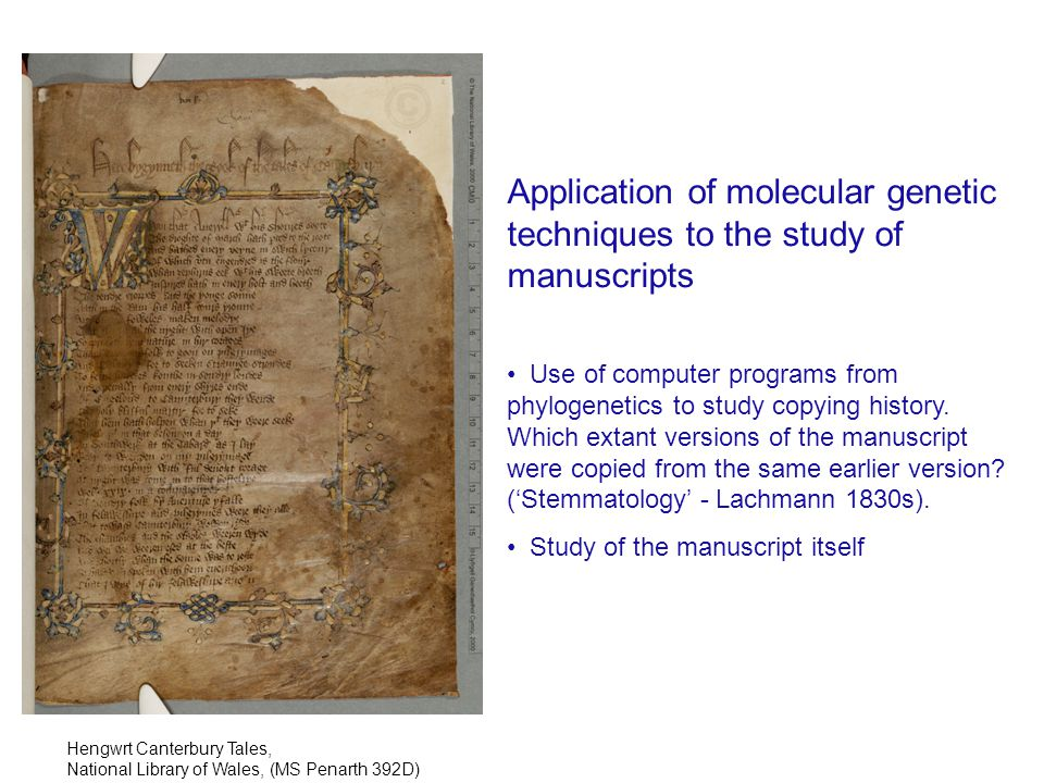 Successful amplification of a nuclear microsatellite Size standards 17631829 Modern Note size difference Microsatellite INRA005 allows differentiation between source of modern parchment and 1763, 1829 sources Composite figure