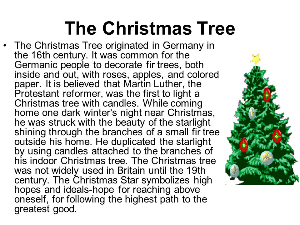 The Christmas Tree The Christmas Tree originated in Germany in the 16th century. It was common for the Germanic people to decorate fir trees, both ins