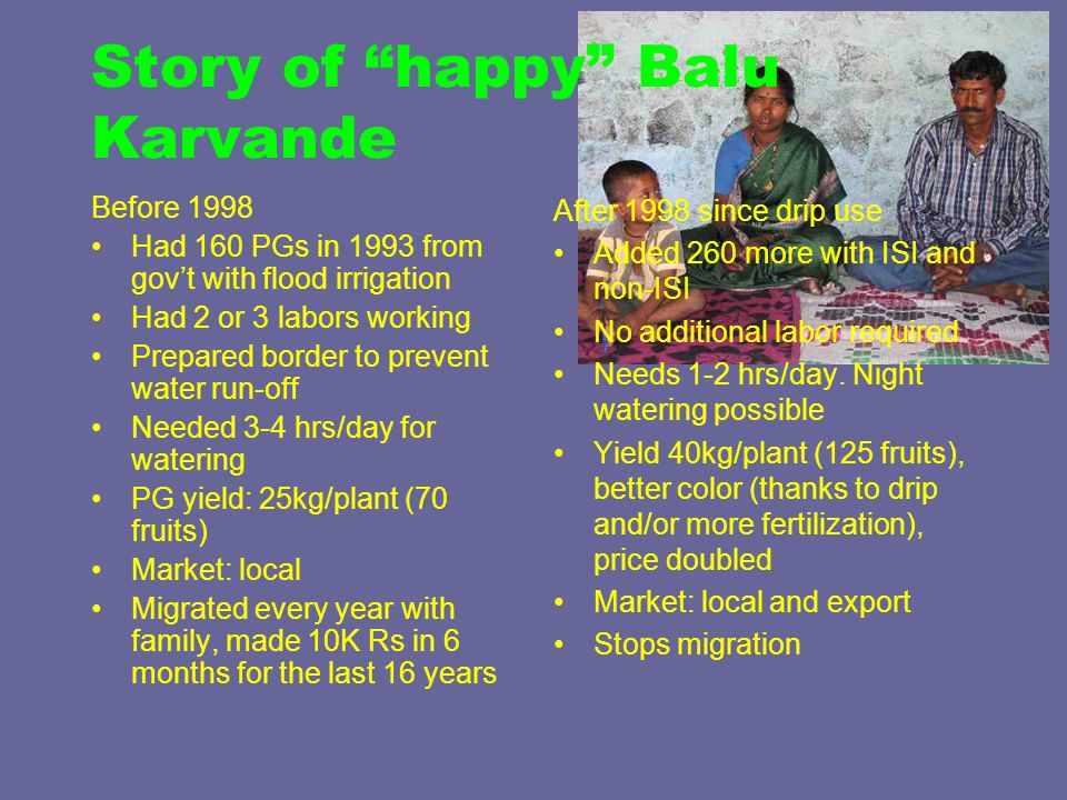 Story of happy Balu Karvande Before 1998 Had 160 PGs in 1993 from gov't with flood irrigation Had 2 or 3 labors working Prepared border to prevent water run-off Needed 3-4 hrs/day for watering PG yield: 25kg/plant (70 fruits) Market: local Migrated every year with family, made 10K Rs in 6 months for the last 16 years After 1998 since drip use Added 260 more with ISI and non-ISI No additional labor required Needs 1-2 hrs/day.