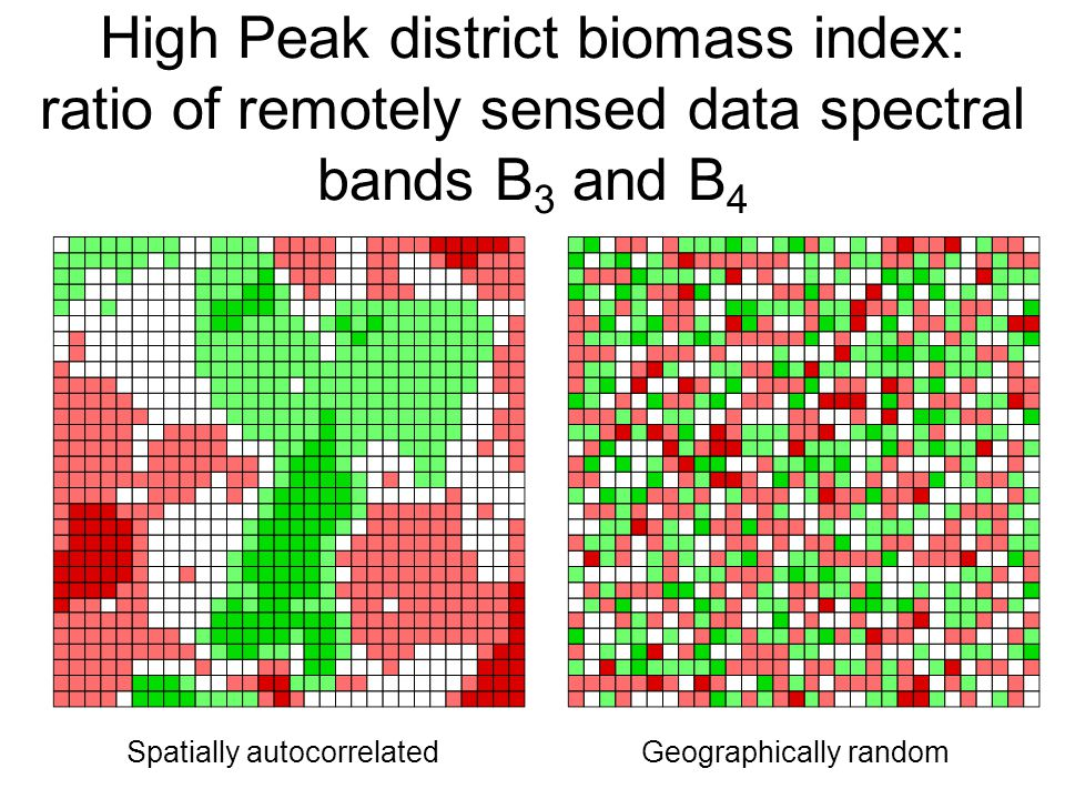 High Peak district biomass index: ratio of remotely sensed data spectral bands B 3 and B 4 Spatially autocorrelatedGeographically random