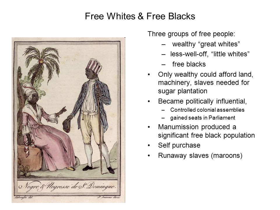 Free Whites & Free Blacks Three groups of free people: – wealthy great whites –less-well-off, little whites – free blacks Only wealthy could afford land, machinery, slaves needed for sugar plantation Became politically influential, –Controlled colonial assemblies –gained seats in Parliament Manumission produced a significant free black population Self purchase Runaway slaves (maroons)