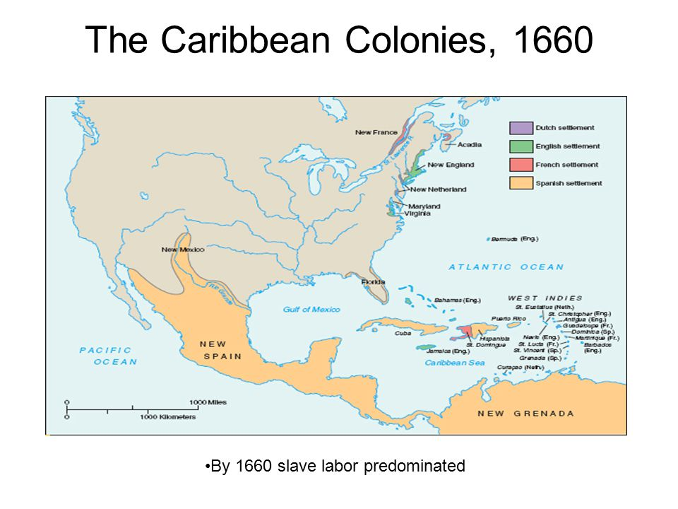 The Caribbean Colonies, 1660 By 1660 slave labor predominated