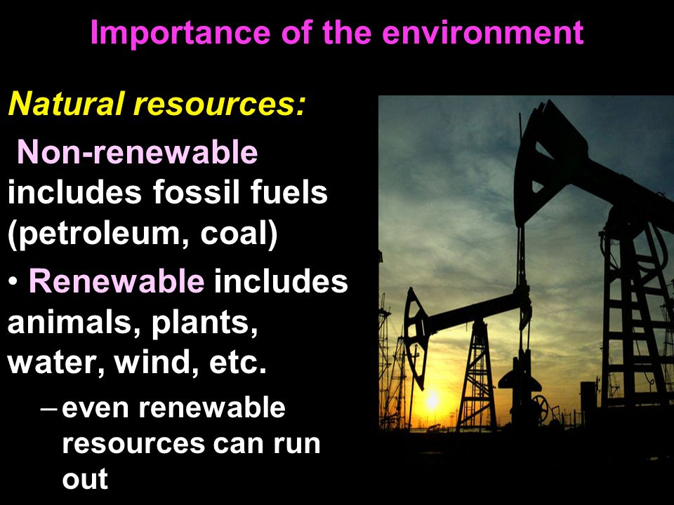 Importance of the environment Natural resources: Non-renewable includes fossil fuels (petroleum, coal) Renewable includes animals, plants, water, wind, etc.