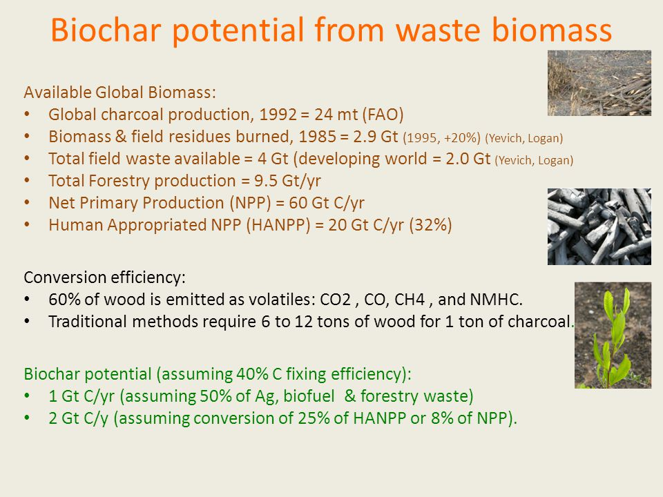 Available Global Biomass: Global charcoal production, 1992 = 24 mt (FAO) Biomass & field residues burned, 1985 = 2.9 Gt (1995, +20%) (Yevich, Logan) Total field waste available = 4 Gt (developing world = 2.0 Gt (Yevich, Logan) Total Forestry production = 9.5 Gt/yr Net Primary Production (NPP) = 60 Gt C/yr Human Appropriated NPP (HANPP) = 20 Gt C/yr (32%) Conversion efficiency: 60% of wood is emitted as volatiles: CO2, CO, CH4, and NMHC.