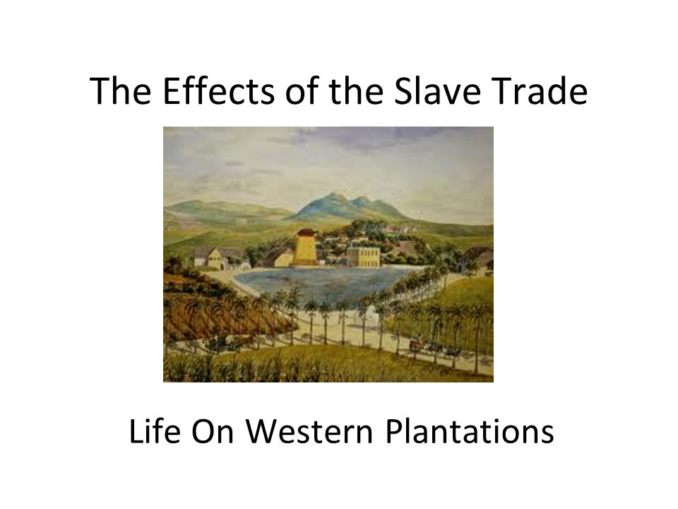 The Effects of the Slave Trade Life On Western Plantations