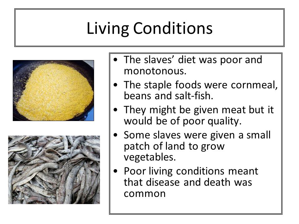 Living Conditions The slaves' diet was poor and monotonous. The staple foods were cornmeal, beans and salt-fish. They might be given meat but it would