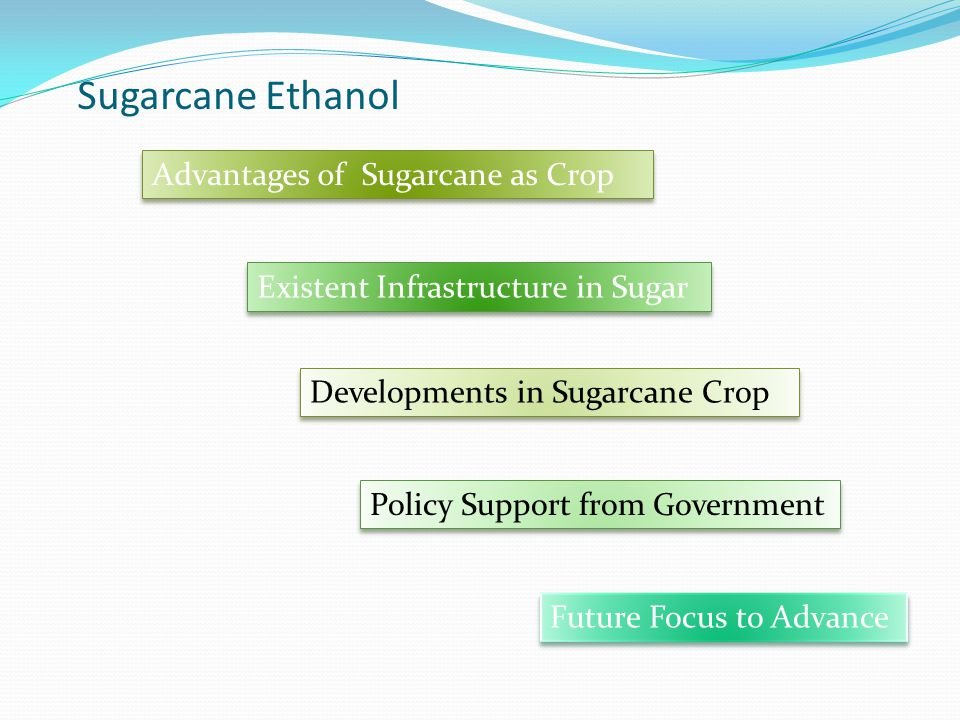 Sugarcane Ethanol Advantages of Sugarcane as Crop Existent Infrastructure in Sugar Developments in Sugarcane Crop Policy Support from Government Future Focus to Advance