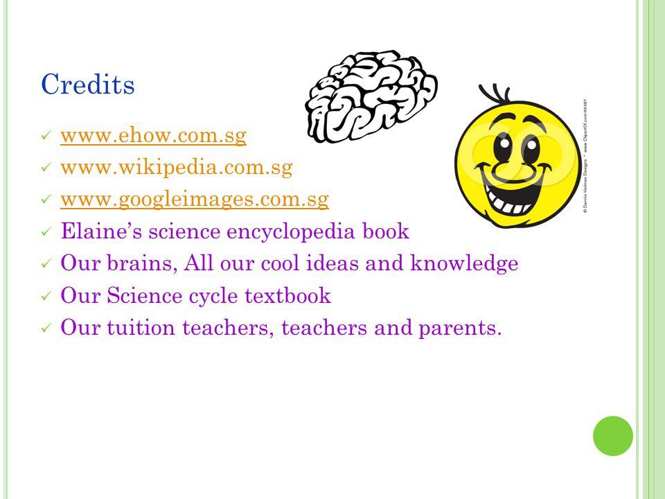 Credits www.ehow.com.sg www.wikipedia.com.sg www.googleimages.com.sg Elaine's science encyclopedia book Our brains, All our cool ideas and knowledge O