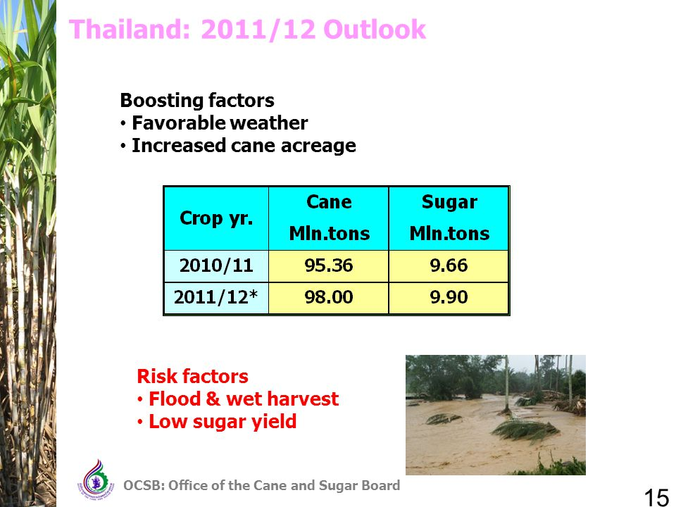 15 OCSB: Office of the Cane and Sugar Board Thailand: 2011/12 Outlook Boosting factors Favorable weather Increased cane acreage Risk factors Flood & wet harvest Low sugar yield