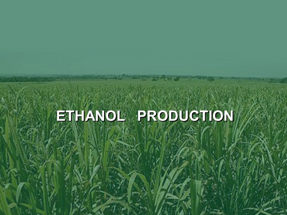 27 New Ethanol & Sugar Plants > Red are new Plants
