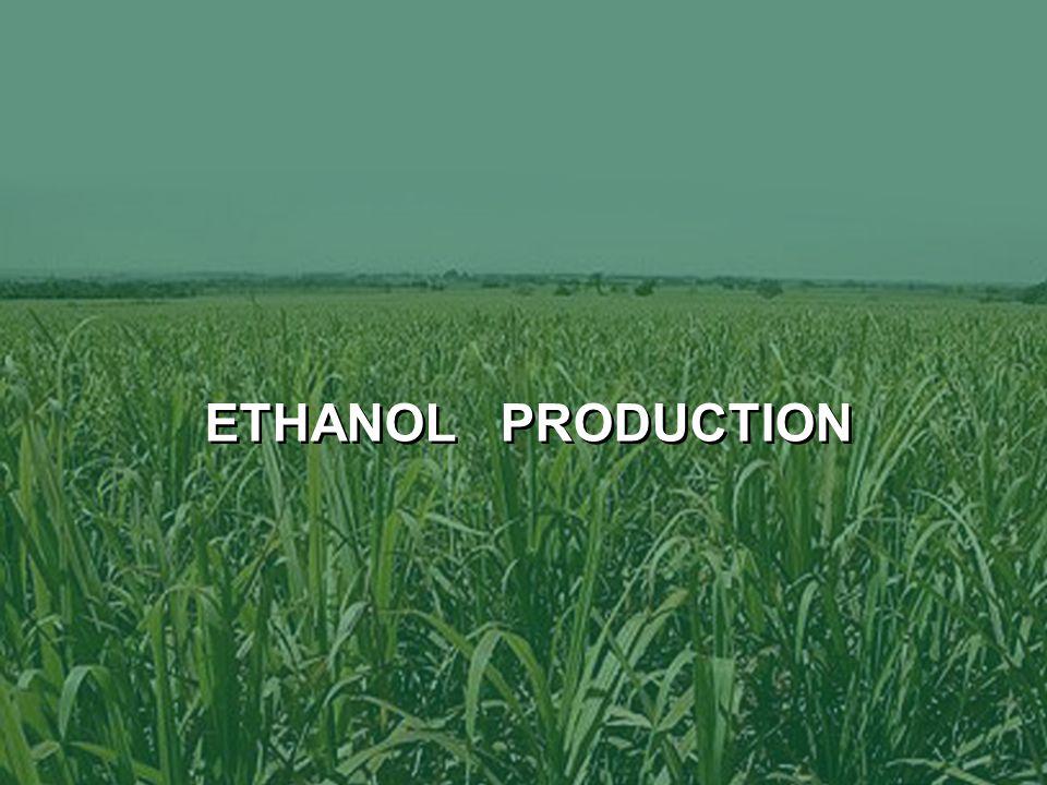 6 ETHANOL PRODUCTION
