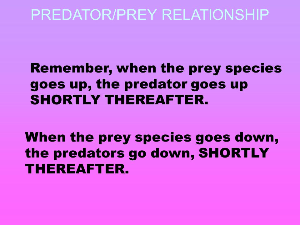 Remember, when the prey species goes up, the predator goes up SHORTLY THEREAFTER. When the prey species goes down, the predators go down, SHORTLY THER