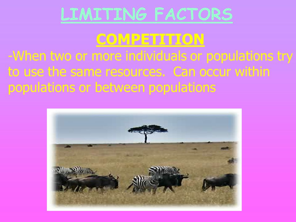 LIMITING FACTORS COMPETITION -When two or more individuals or populations try to use the same resources.