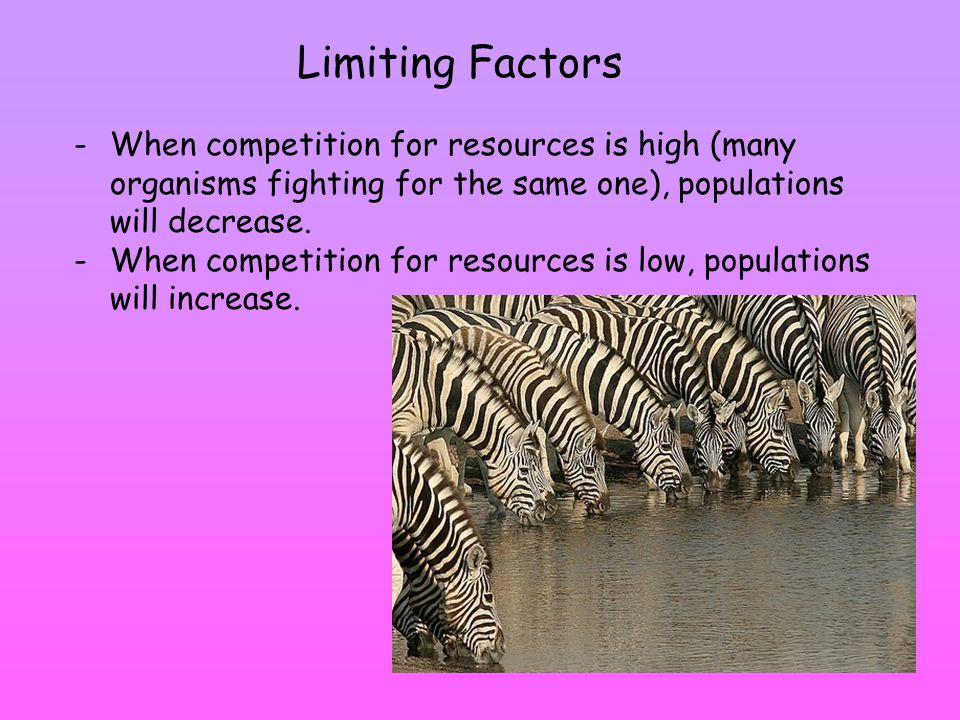 Limiting Factors -When competition for resources is high (many organisms fighting for the same one), populations will decrease.