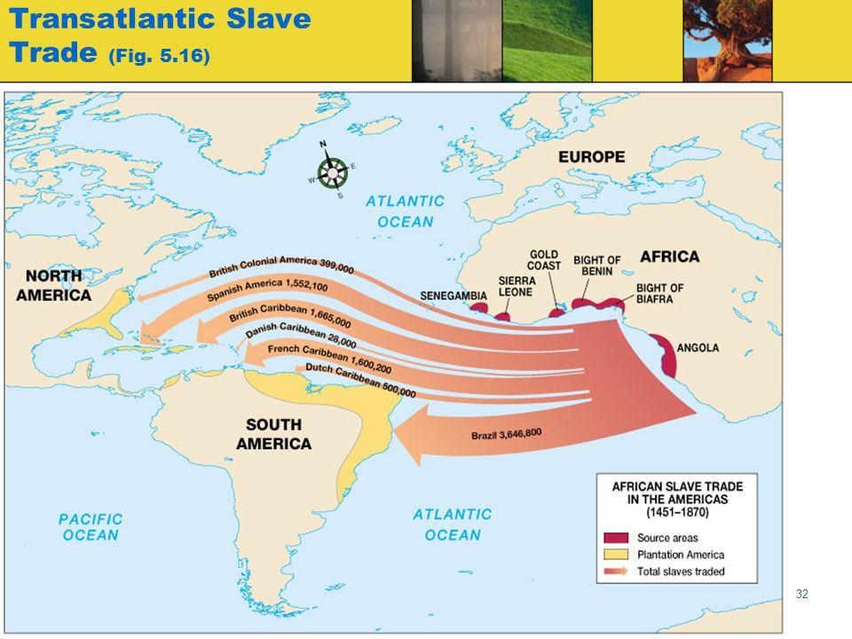 Globalization & Diversity: Rowntree, Lewis, Price, Wyckoff 32 Transatlantic Slave Trade (Fig. 5.16)