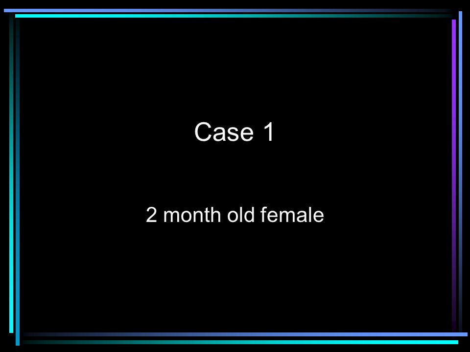 Case 2 3 year old female