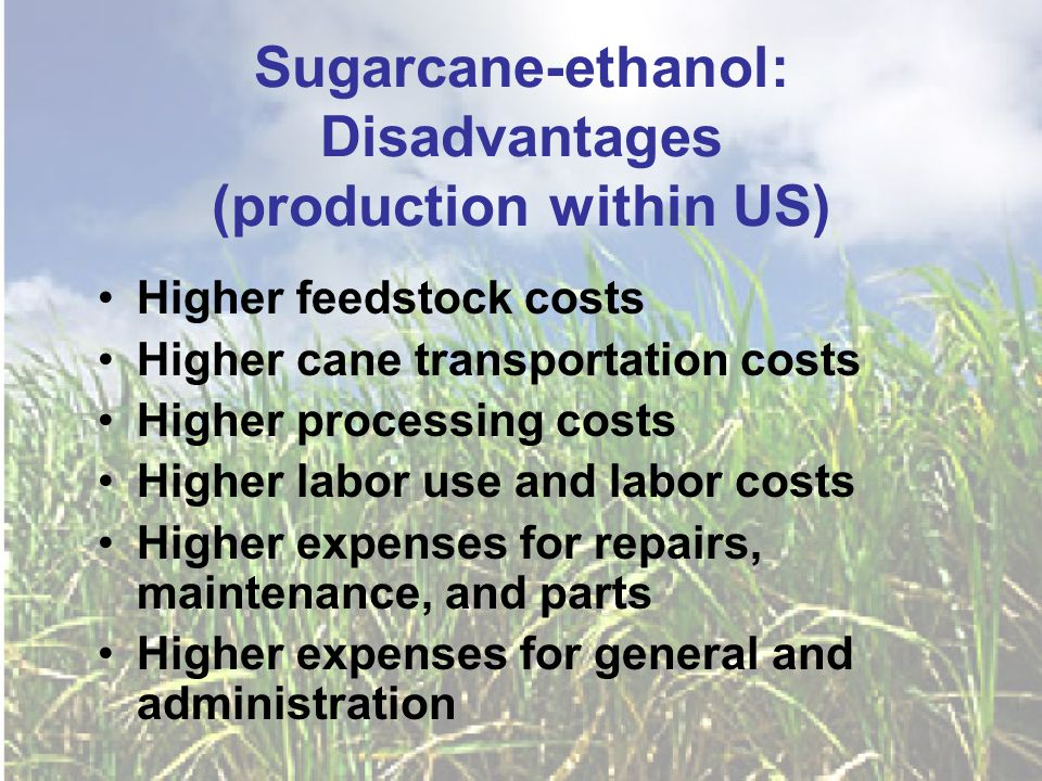 Sugarcane-ethanol: Disadvantages (production within US) Higher feedstock costs Higher cane transportation costs Higher processing costs Higher labor use and labor costs Higher expenses for repairs, maintenance, and parts Higher expenses for general and administration