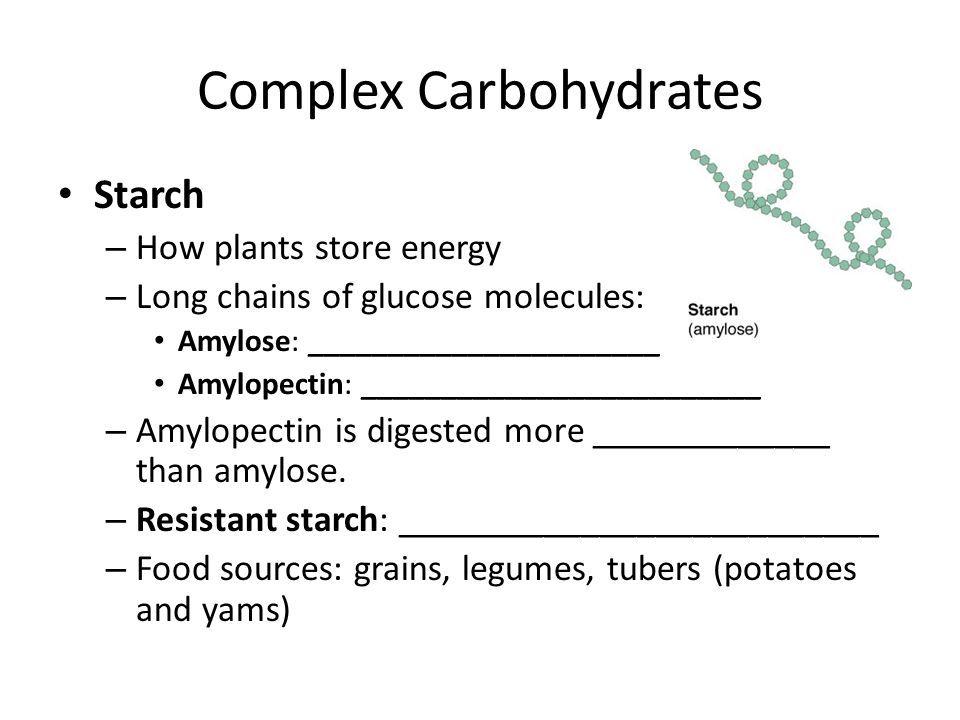 Complex Carbohydrates Starch – How plants store energy – Long chains of glucose molecules: Amylose: ______________________ Amylopectin: _________________________ – Amylopectin is digested more _____________ than amylose.