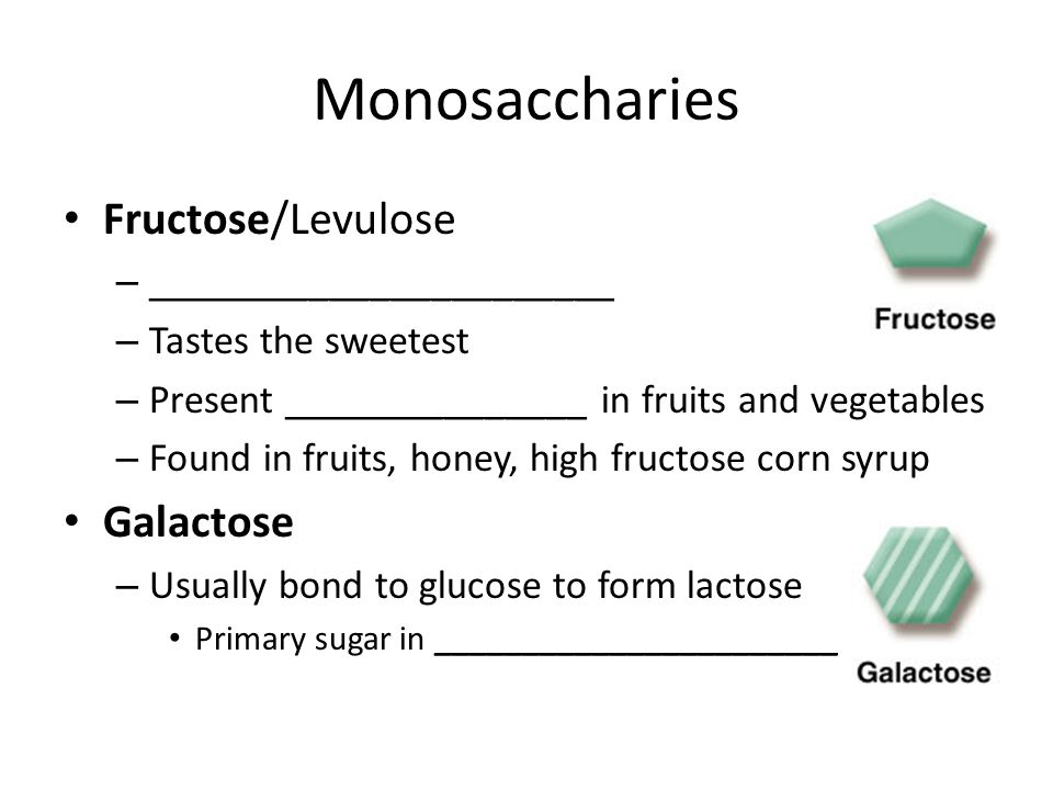 Monosaccharies Fructose/Levulose – _______________________ – Tastes the sweetest – Present _______________ in fruits and vegetables – Found in fruits, honey, high fructose corn syrup Galactose – Usually bond to glucose to form lactose Primary sugar in _______________________
